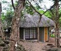 Ascot Bush Lodge, Scottsville Accommodation